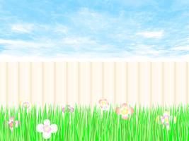 Gartenzaun ein Hinterhof mit blauem Himmel.