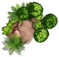 Ställ av natursten och växt