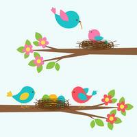 Två söta familjer av fåglar på blommande grenträ