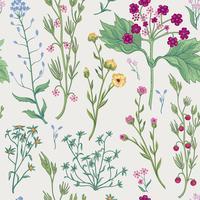 Blommigt sömlöst mönster. Blomma bakgrund. Dekorativa trädgårdsblommor.