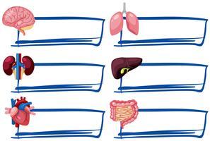 En uppsättning mänskliga organ och banner
