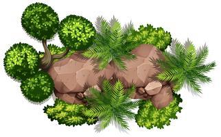Satz von Natur Rock und Pflanze vektor