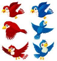 Satz des Vogelcharakters vektor