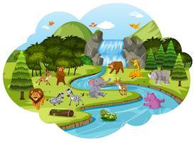 Tiere in der Waldszene vektor