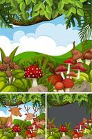 Drei Waldszenen mit Rehen und Pilzen vektor