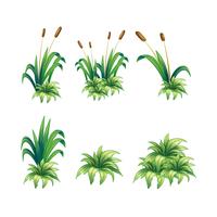 Unkraut und Pflanzen vektor