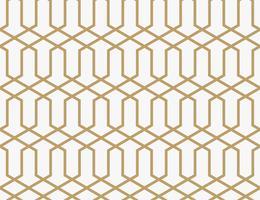 Abstrakt geometrisk mönster med linjer. En sömlös vektor backgro