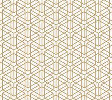 geometriskt sömlöst mönster med linje, modern minimalistisk stil pa