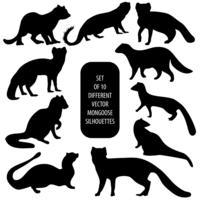 Set med 10 olika vektor Mongoose silhuetter