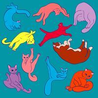 Lustige helle nette Katzen, die Yoga üben