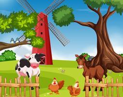 Gårddjur på jordbruksmark
