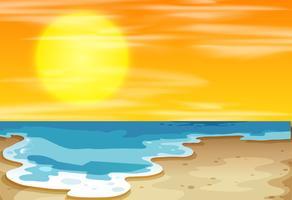 Solnedgång på stranden vektor