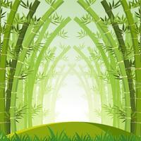 Bakgrundsscen med grön bambuskog vektor