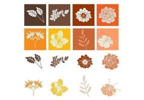 Botanischer Blumen-Vektor-Pack vektor