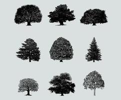 Silhouette Baum Vektor Pack