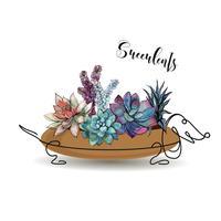 Suckulenter. Sammansättning av blommor i en blomkruka i form av en hunds taxa. Grafik. Vattenfärg. Vektor.
