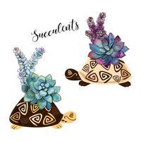 Ein Bouquet von Sukkulenten in einem Blumentopf in Form einer Schildkröte. Grafiken und Aquarellflecken. Vektor.