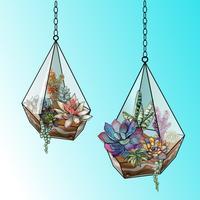 RGBFlower arrangemang av succulenter i ett geometrisk glas akvarium. Vektor.