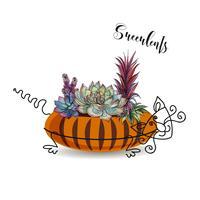 Dekorative Komposition von Sukkulenten. In einem Blumentopf in Form einer gestreiften Katze. Grafiken mit Aquarell. Vektor.