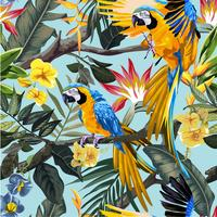 Macaw fågel i exotisk skog sömlös mönster