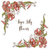 Ram dekor med Lily blommor. Dekorativt hörn. Vektor
