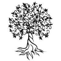 Träd med rot vektor