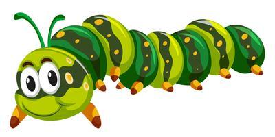Grön caterpillar krypa på vit bakgrund