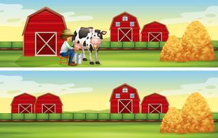Jordbrukare mjölkande ko på gården
