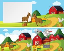 Scener med hästar på gården