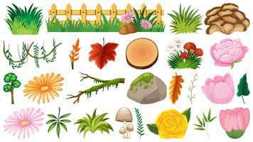 Set av prydnadsväxter