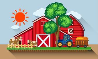 Gårdsgård med kor och blå traktor