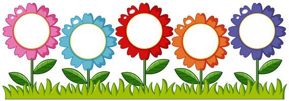 Färgglada blommor i trädgården vektor
