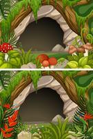 Två scener av grotta och blommor