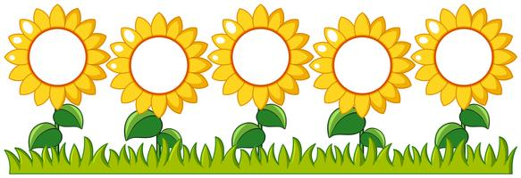 Solrosor trädgård med skrivutrymme vektor