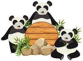 Rundes Brett mit drei süßen Pandas vektor