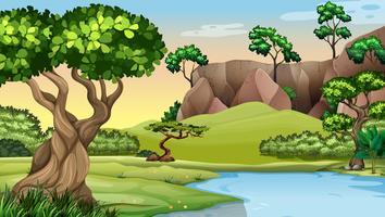 Scen med träd vid dammen