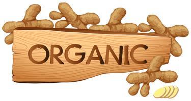 Ekologiskt tecken med färska gingers