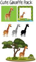 Eine Packung mit süßen Giraffen