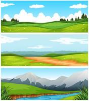 Scener med fält och väg på landsbygden vektor