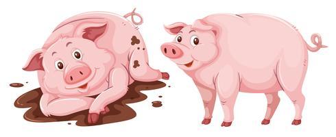 Schwein auf weißem Hintergrund vektor