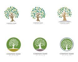 Personalausweisvektor-Logoschablone der grünen Leute des Baums vektor