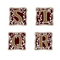 dekoration brev S, T, R, Q logotyp design koncept mall