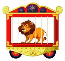 Lion i cirkusbur