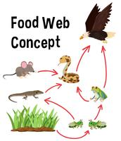 Science Food Web-Konzept vektor