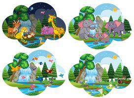 Set von Tieren in Szenen vektor