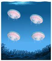 Qualle unter tiefem Ozean vektor