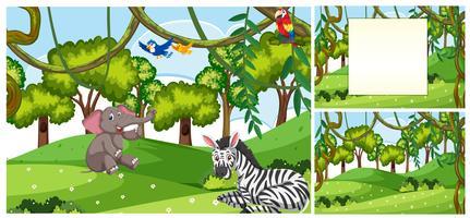 Set av djur i naturmall vektor