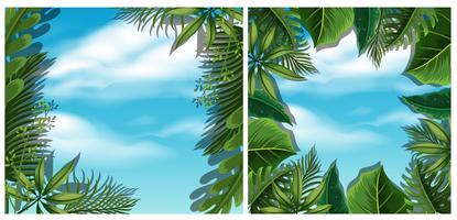 Titta på himlen från bottenvyn i skogen vektor