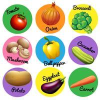 Färsk grönsak i runda märken