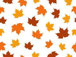 Maple lämnar sömlöst mönster isolerad på vit bakgrund